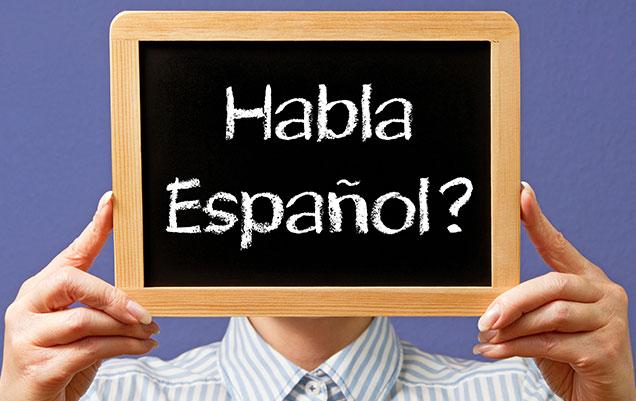 Aulas de espanhol básico - LínguaE